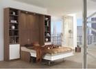 Дизайн интерьера совмещенной с гостиной спальни